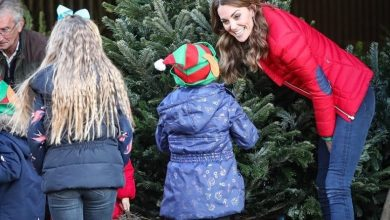 Photo of Kate Middleton revela una noticia sorprendente del pequeño príncipe Louis
