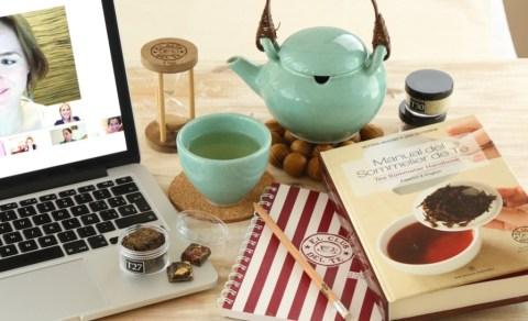 curso de té online en vivo y en directo