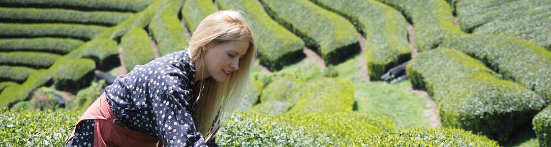 Victoria Bisogno en campos de té en Japón