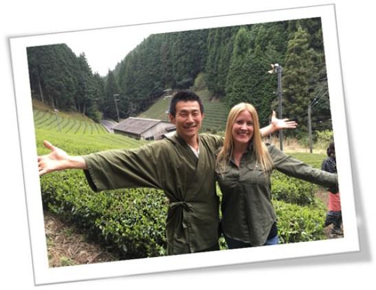 Campos de té en Japón