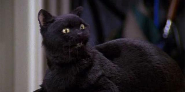 The Salem from the original series was one of the show's favorite characters (Photo: Nickelodeon)