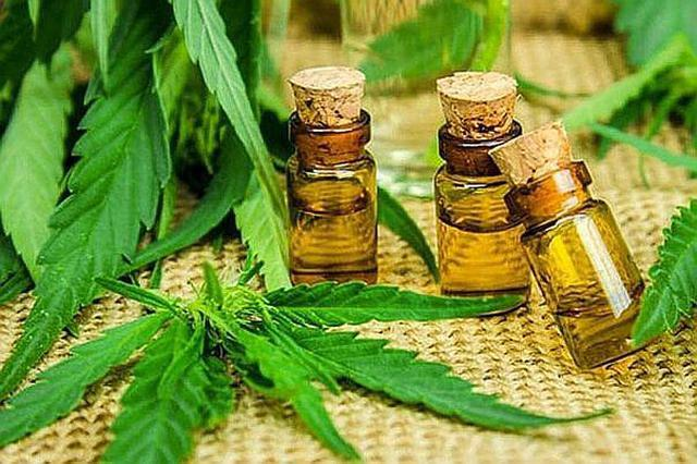 It is estimated that the medical cannabis market will move US $ 100 million in Peru by 2028.