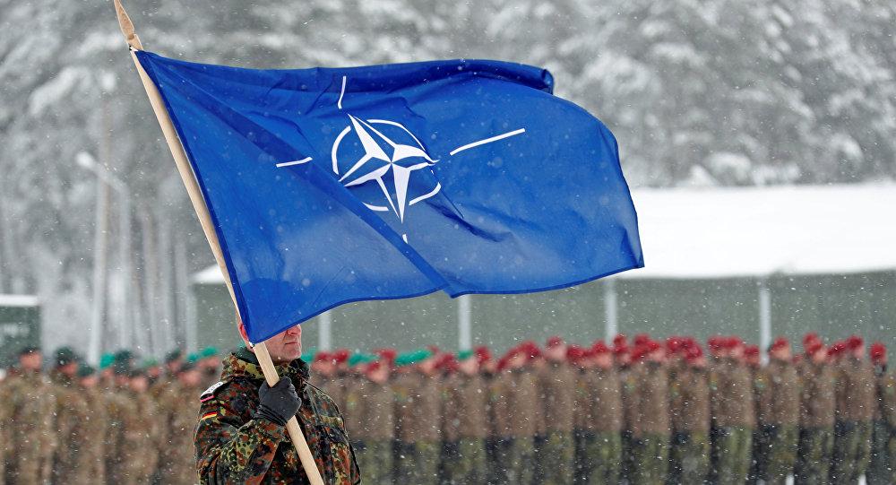 El depredador y su presa: por qué la OTAN trata de 'devorar' cada vez más trozos de Europa
