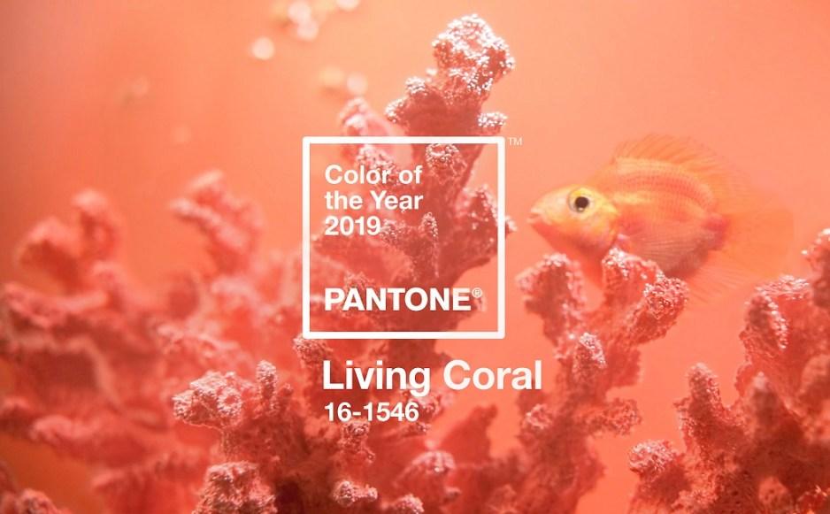Decora tu boda con living coral 4