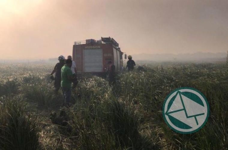 Incendio en la reservade Punata Lara sabado 3 0110