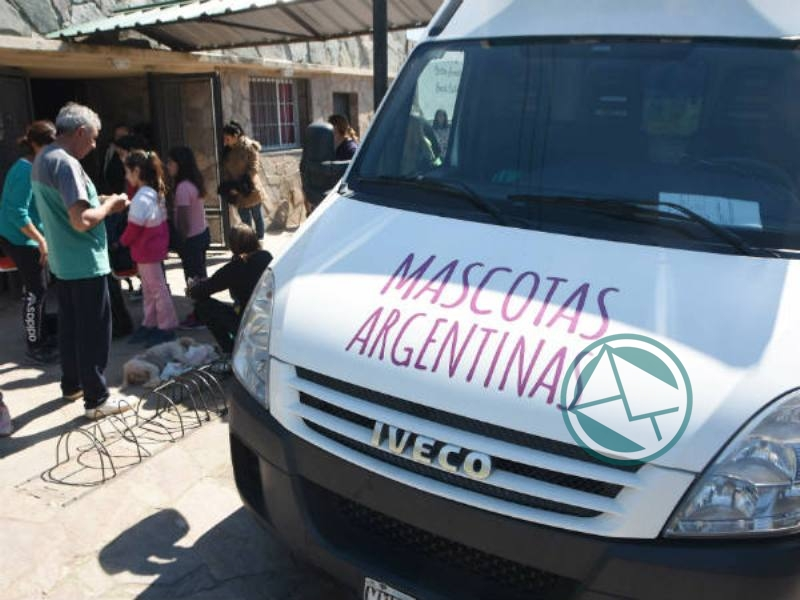 Castración gratuita de perros y gatos en el Fortín Gaucho