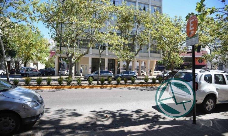 Estacionamiento medido con horario reducido en La Plata durante enero
