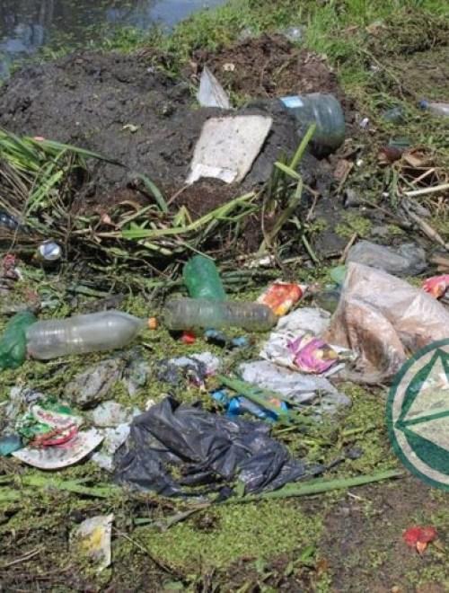 Limpieza de arroyos y zanjones en el barrio El Molino de Ensenada 2