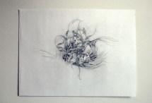Flourish (Spring)