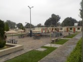 CCM Grounds