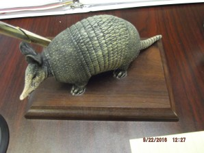 Seeing the armadillo in the mission office made my day! I still don't have leprosy!