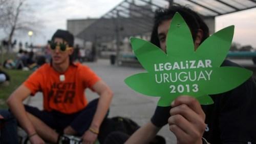 marihuana-uruguay