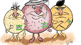 ilustracion VPH