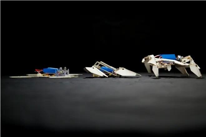 Despliegan Caminando Inspirados Y Se Origamis Van En Robots Solos sdhrCQt