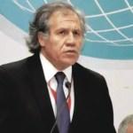 El secretario general de la Organización de Estados Americanos, Luis Almagro. Foto de archivo.