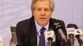 Secretary General of the Organization of American States (OAS), Luis Almagro, in a June 12, 2016 press conference ahead of the June 13-15 OAS 46th General Ordinary Assembly, in Santo Domingo, Dominican Republic. The OAS will open the General Assembly discussing the crisis in Venezuela and the Inter-American Human Rights Commission budget and political conflict. / AFP / afp / ERIKA SANTELICES