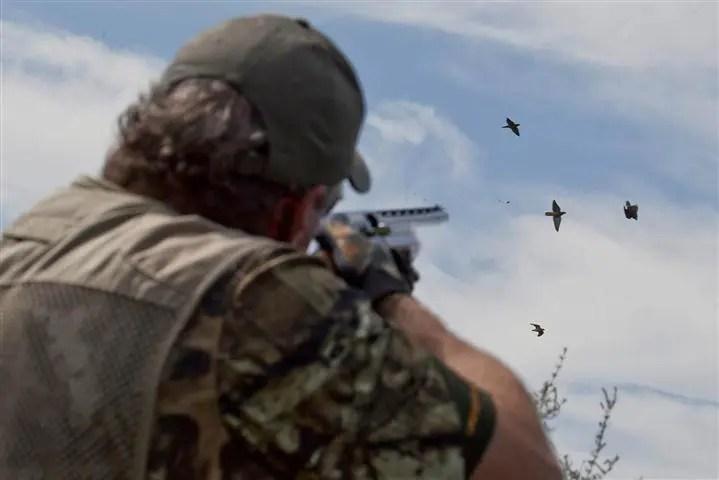 Dominicana prohíbe cacería de aves durante dos años