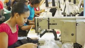 Las pequeñas empresas creen incentivarán empleos en el sector.