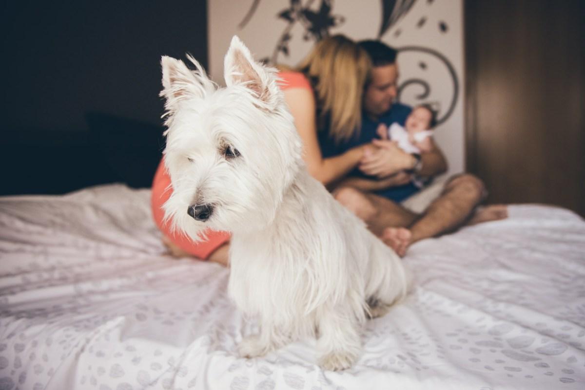 Fotografo familia barcelona
