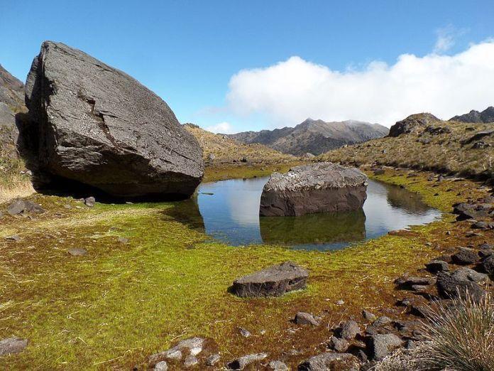 Laguna periglaciar en el páramo Batallón, Parque Nacional Juan Pablo Peñaloza