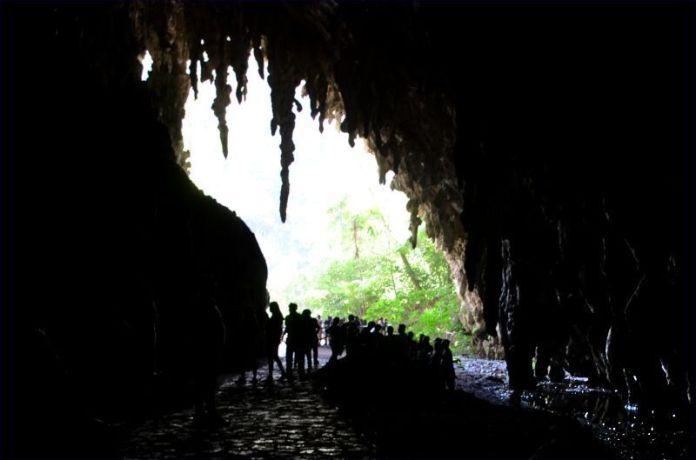 La Cueva del Guácharo
