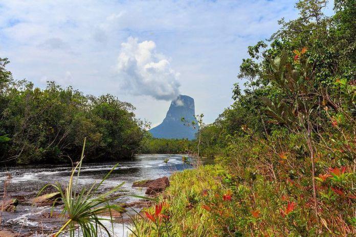 El Cerro Autana desde el Caño Zorro