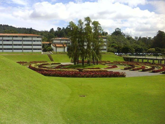 Laberinto Cromovegetal en la Universidad Simón Bolívar
