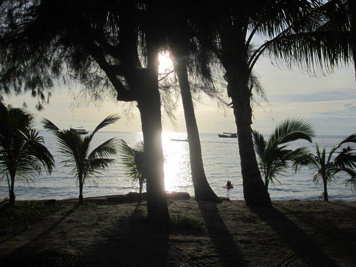 Koh Tao: Paraíso bajo el mar