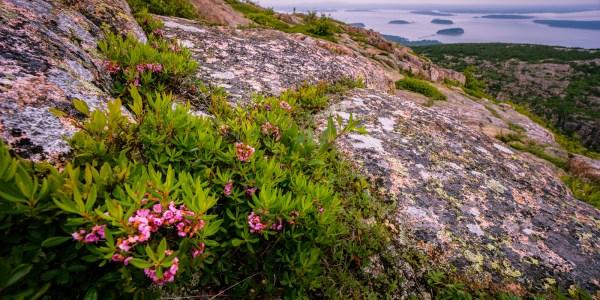 A Nice Existence - Cadillac Mountain - Maine 2013