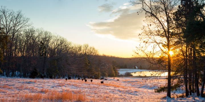 Snow At Dawn - Lightroom Edit - CorePresets Show
