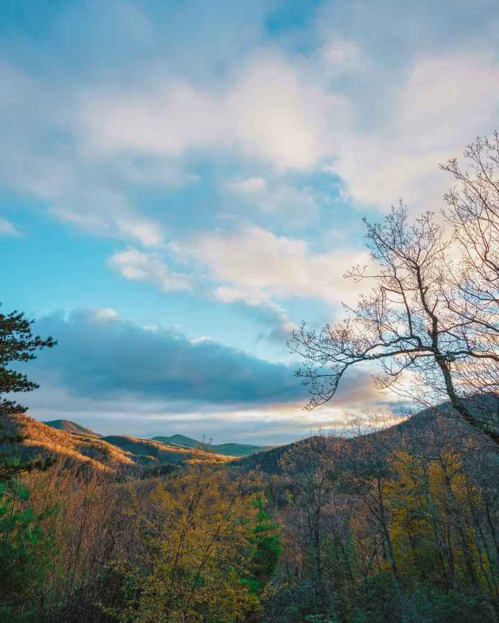 Good Morning Asheville