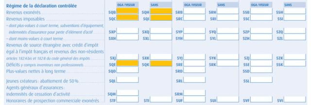 Le formulaire à remplir et les cases spécifiques au micro BIC (source de l'image : robotcompta.fr)