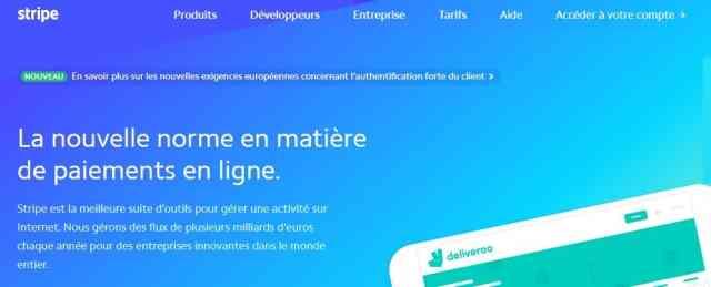 Copie d'écran de la page d'accueil de stripe, votre terminal de paiement électronique en ligne pour encaisser vos clients