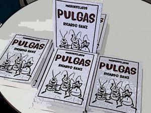 libro-pulgas-9