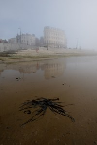 Misty Margate