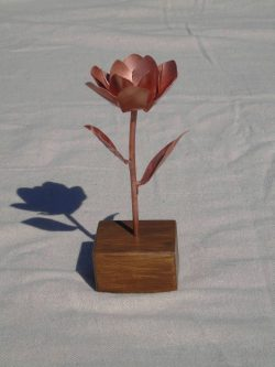 magnolia copper flower