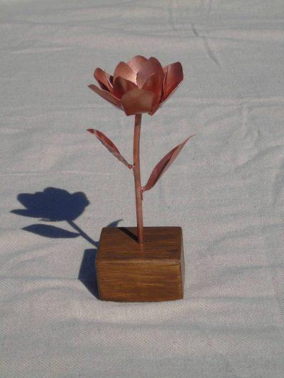 magnolia copper flower