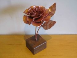 copper rose version 2