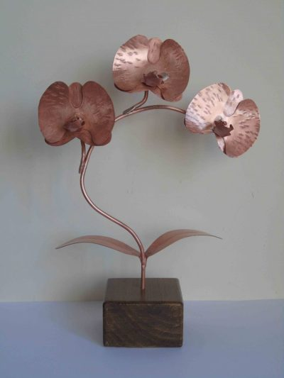 copper orchid