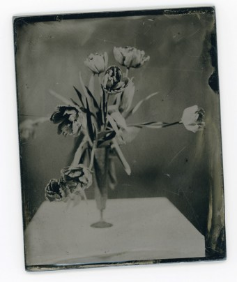 Collodion Wetplate on Black Acrylic