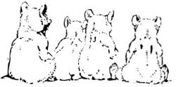 beren op de weg