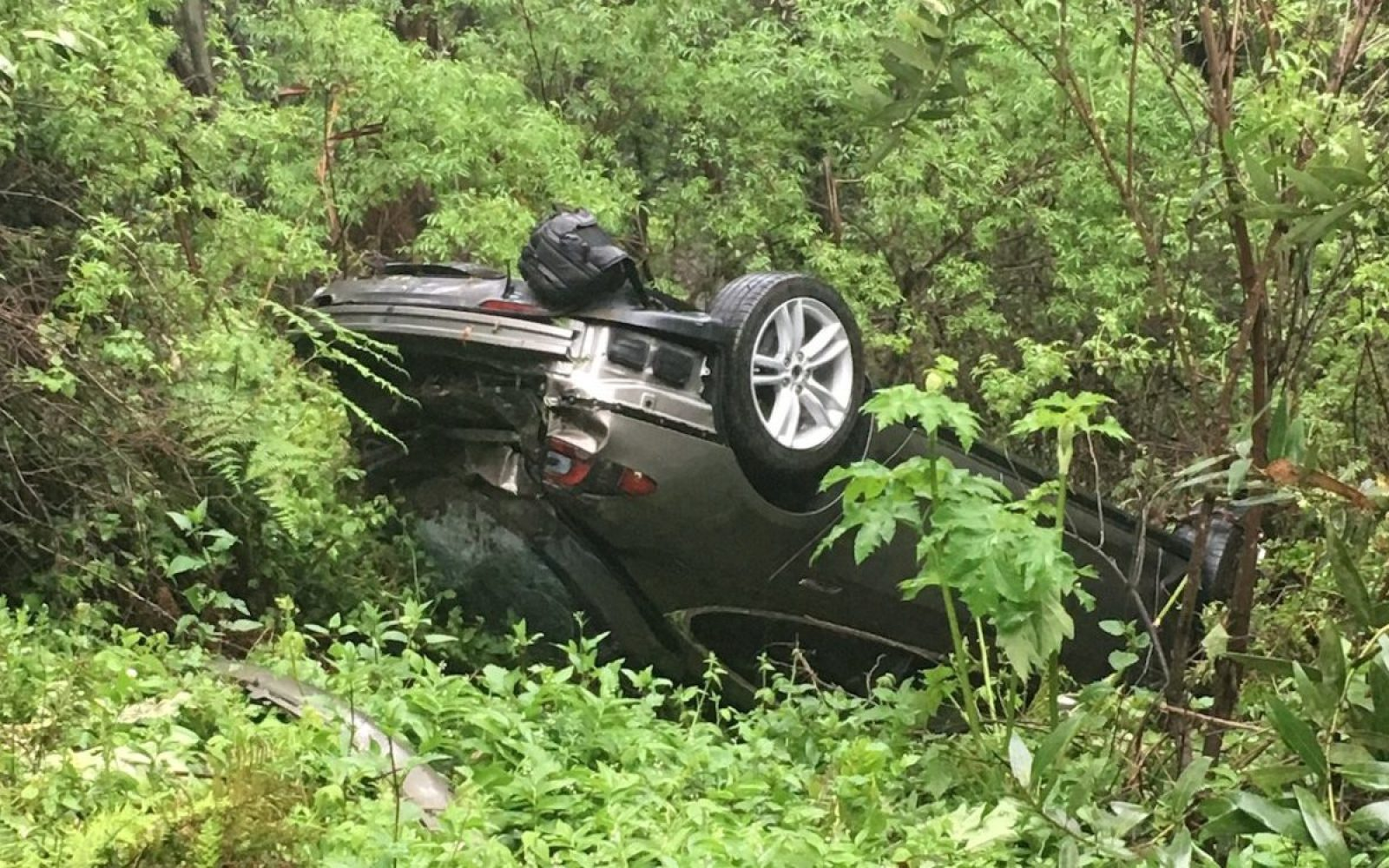 Tesla driver says Model S 'saved his life' after walking away unscathed from a crash ~500-ft down a hill