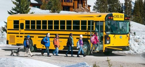 Our Buses-RE Diesel