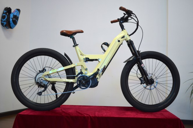 frey bike cc model
