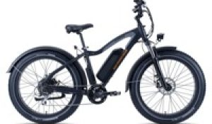 Rad Power Bikes sales