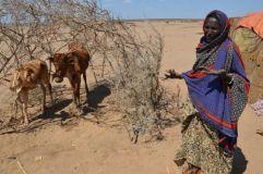 Pic2 Ethiopia