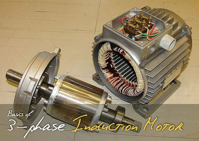 basics of three phase ac induction motor jpg resize 665 471 three phase induction motor wiring diagram wiring diagrams 665 x 471