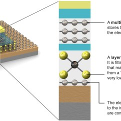 Composite Cell Diagram Chloroplast Structure Graphene Microchips  Know The Basics Electrical