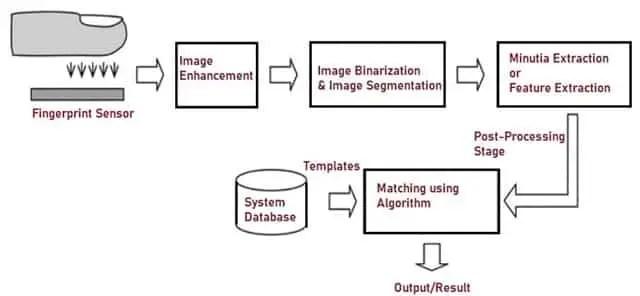 Working Principle of Fingerprint Recognition System