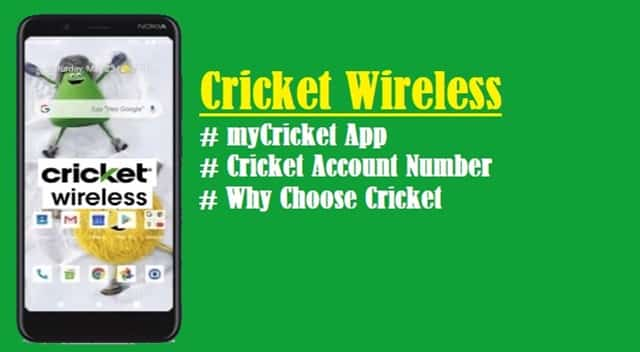 Introduction to Cricket Wireless (1)